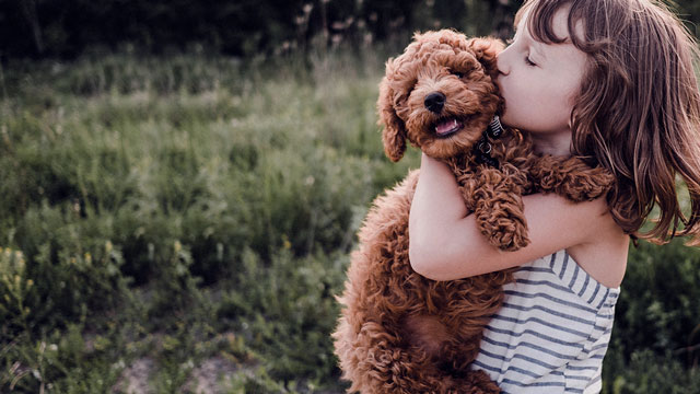 Girl hugging brown dog.